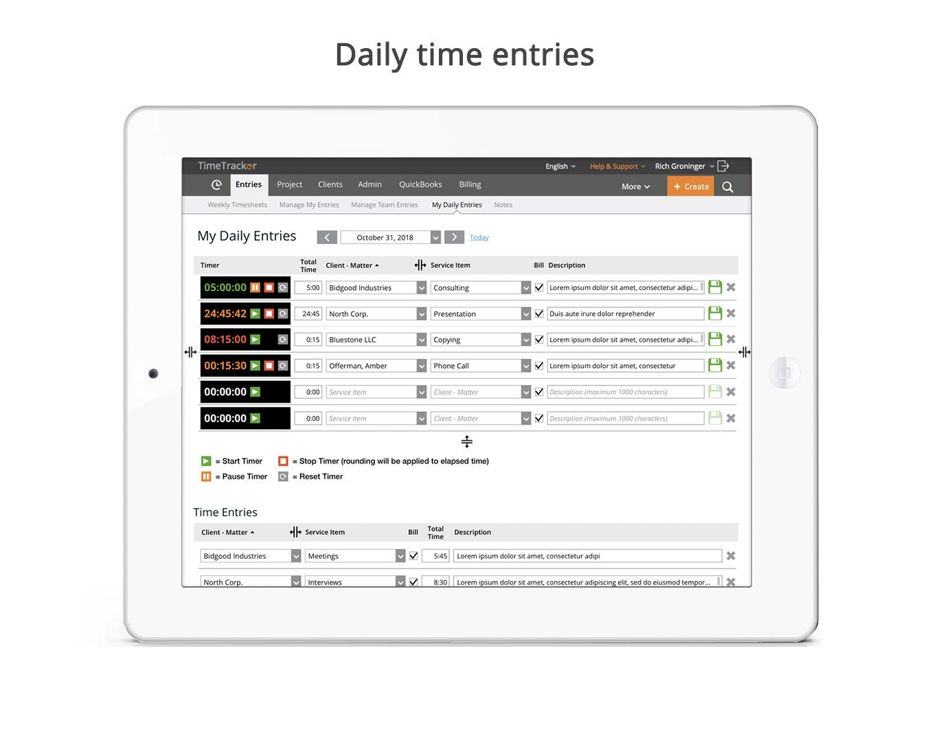 Daily time entries